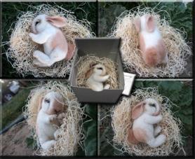 Lisa-Schmidt-Bunny