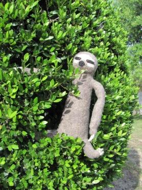 Needle Felted Three Toed Sloth