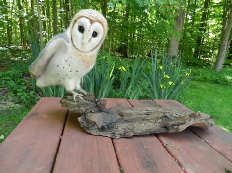 Needle Felted Barn Owl