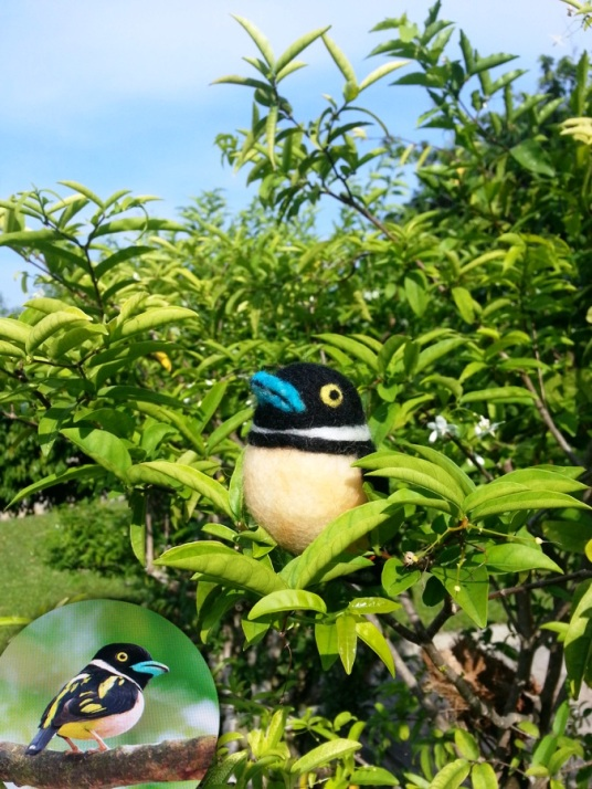 Needle Felted Black and Yellow Broadbill Bird
