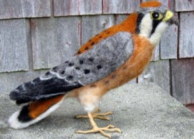 Needle Felted Life Sized Kestral Bird Hawk