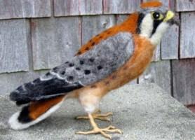 Needle Felted Life Sized Kestral Bird Hawk