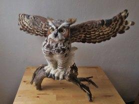 Erin-Carlson-Owl3