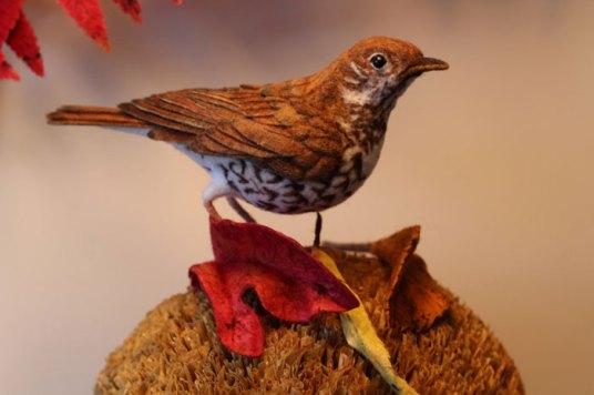 Needle Felted Bird - So Realistic, by Jackie Felix on www.livingfelt.com/blog