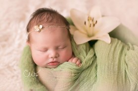 Christy Wallis Photography | new born | San Diego, CA -  LIVING FELT MC-1 Batt