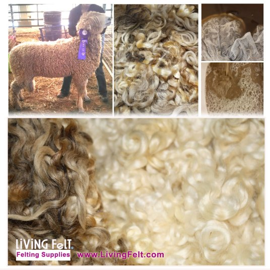 White Santa Locks - Living Felt Prize Fleece
