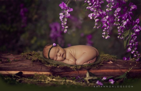Rhiannon Logsdon Photography | new born  Austin, Texas -  LIVING FELT MC-1 Batt Olive