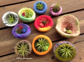 Patty Lovegreen Felted Air Plant Pots on www.livingfelt.com/blog