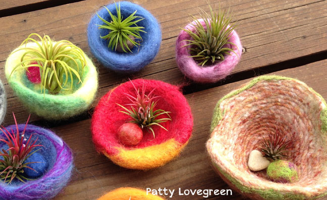 Patty-Lovegreen Felted Pots for Air Plants on www.livingfelt.com/blog
