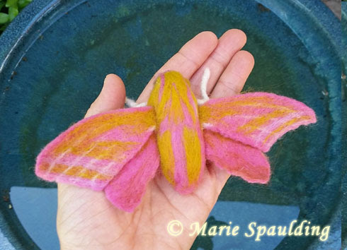 Needle Felted Elephant Hawk Moth by Marie Spaulding featured on www.livingfelt.com/blog.