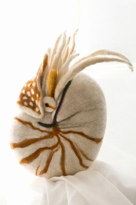 Needle Felted Nautilus by Teresa Brooks featured on www.livingfelt.com/blog